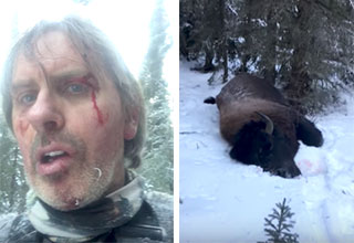badass dude fought a bison and lived