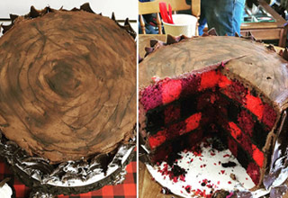 a cake that looks like a log on outside and flannel shirt on inside