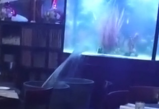 giant aquarium with a crack in the glass