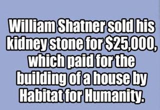 text about william shatner selling a kidney stone for charity