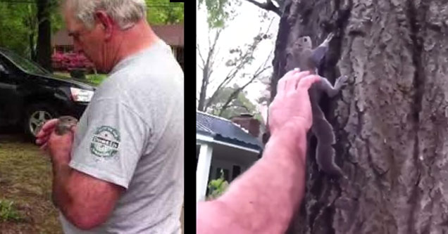 man in white shirt releasing a squirrel he rescued back into nature