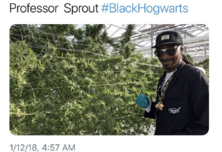 Snoop dog standing next to a weed plant. Caption says