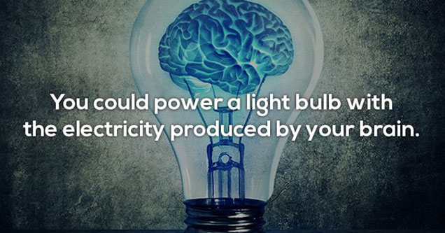 you could power a light bulb with the energy your brain produces