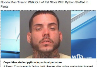 florida man tries to walk out of pet store with python stuffed in pants reads headline