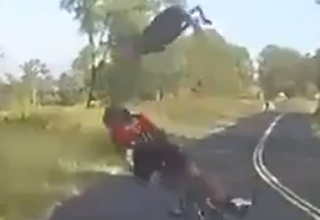 Kangaroo dropkicks cyclist
