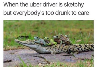Frogs ride an alligator despite better judgement