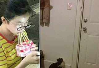 lady with glasses drinking entire pack of juice with six straws, cat in doorway staring at laser pointed by light switch