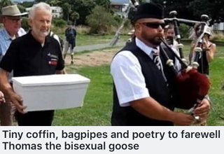 Thomas the bisexual goose's remains are taken to burial