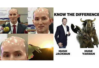 bald man who's head makes a frog cover his eyes, a yakman and hugh jackman next to each other