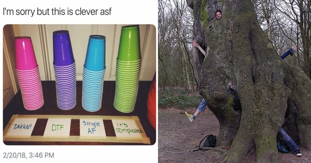 4 piles of plastic cups of different colors, each represent a level of relationship status,  a tree with people and limbs sticking out of different parts