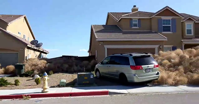 a house in a suburban area covered with tumbleweeds next to a olive minivan