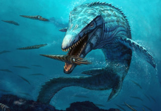 Mosasaur extinct deep sea creature.