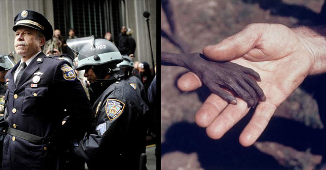 a police officer is arrested during wall street protests and a starving boys hand holding a missionary's hand