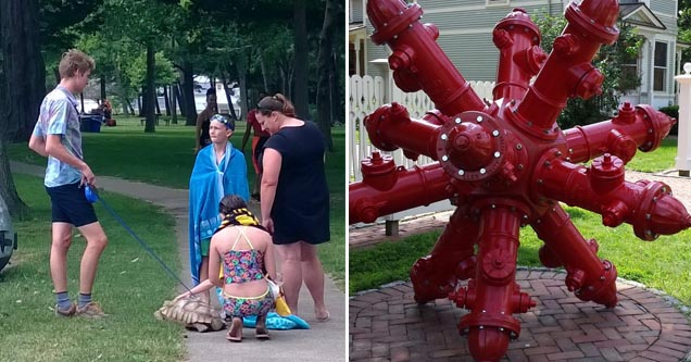 turtle being walked on a leash down the sidewalk, a hydrant sculpture