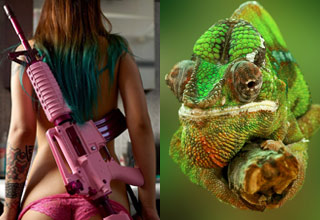 a woman with dyed hair and a pink rifle and a chameleon on a stick