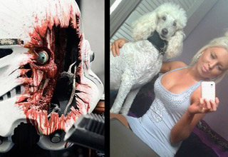a storm trooper helmet blown apart with face inside and a blonde woman and her white poodle