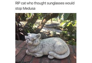 cat statue with sunglasses on, fish holding spongebob shaped like a ball