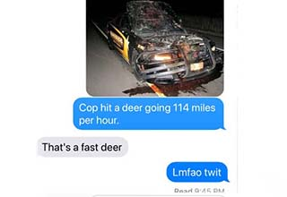 a series of texts about a police car that ran into a deer