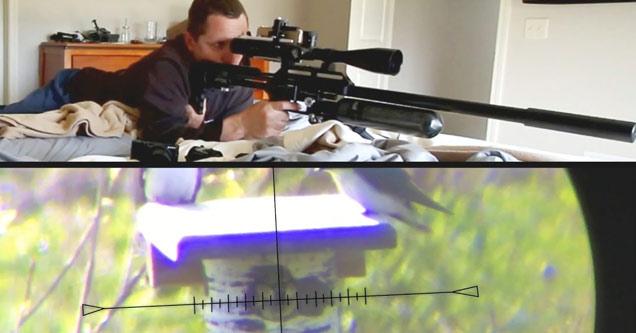 a man with an air powered sniper rifle shoots an invasive bird
