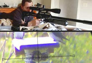 a man with an air powered sniper rifle shoots an invasive bird