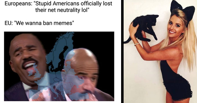 a meme with steve harvey about the EU banning memes and a hot blonde holding a black cat while wearing black cat ears