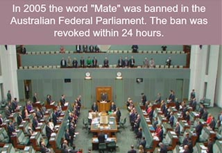 the australian parliament discussing an issue