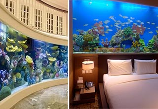 two large aquariums in a house