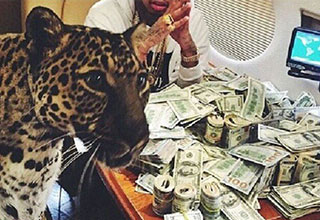 a leopard with a pile of cash