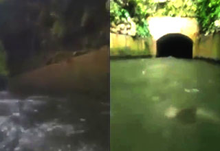 a canal with a tunnel and something strange in the water