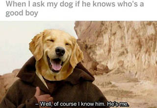 Dog being asked if he is a good boy.