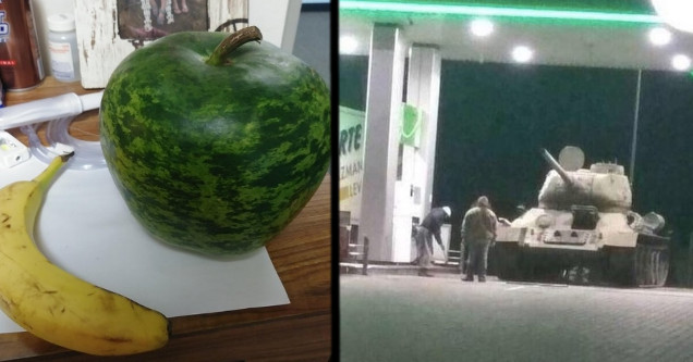 watermelon that looks like an apple. tank at the gas station.