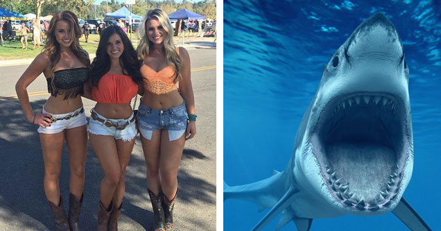 a group of super hot college girls in tiny tops and daisy duke shorts and a huge shark with its mouth wide open coming at the camera
