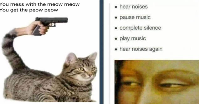 A meme about cats and a meme about looking at stuff.