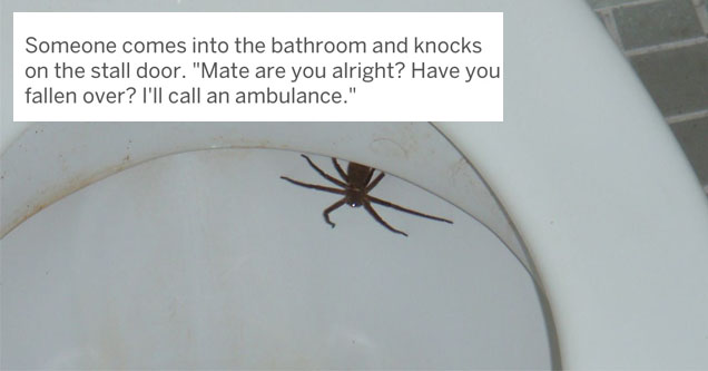 a spider in a toilet with text over top of him
