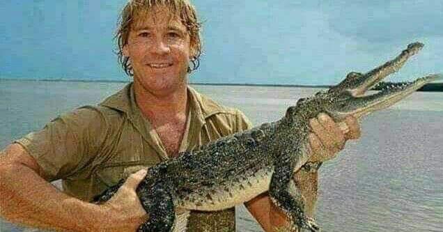 Steve Irwin holding a crocodile.
