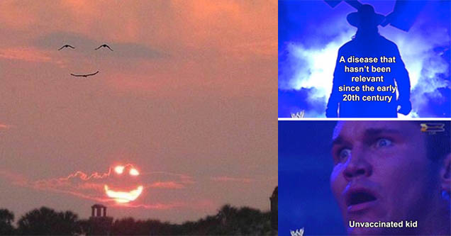 Birds that look like a person smiling. Sunset that looks like a smile. Wwe meme.