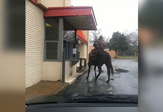 Man on horse getting drive thru food.