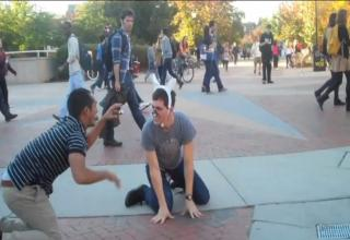 SURREAL COLLEGE CAMPUS CAT FIGHT!