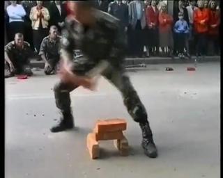 Public Humiliation Soldier X Bricks view on ebaumsworld.com tube online.