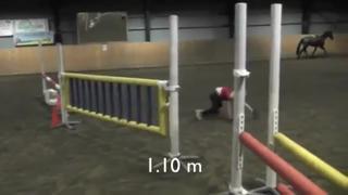 Swedish Girl Loves Jumping Like A Horse view on ebaumsworld.com tube online.