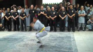 Shaolin Monk Animal Forms Demonstration view on ebaumsworld.com tube online.