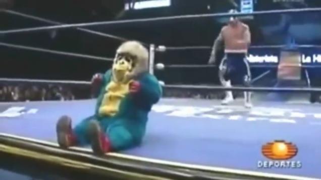 Midget sumo wrestlers sorry, that