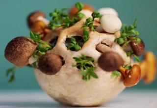 D Printed Food Grows Before You Eat It Gallery EBaums World - 3d printed edible food grows eat