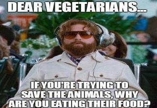 84266504 brace yourself anti vegan memes are coming gallery ebaum's world
