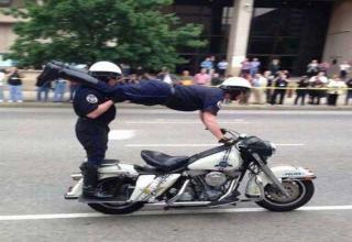cop helps ducklings cross road