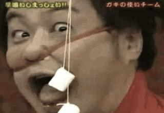 crazy japanese television shows