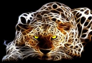 an abstract drawing of a cheetah or leopard