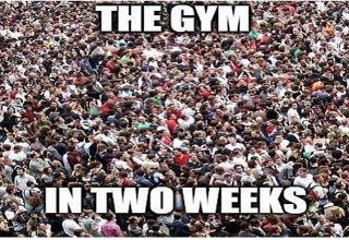 huge crowd of people with the text 'the gym in two weeks'