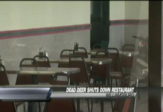Possibly The Most Disgusting Restaurant On Kitchen Nightmares