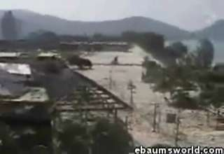 Tsunami Home Video